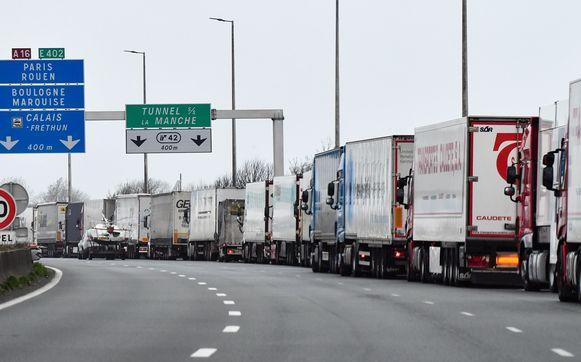 De stiptheidsacties zorgen voor lange wachtrijen voor vrachtwagens die op weg zijn naar het Verenigd Koninkrijk.