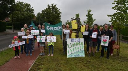 """Groen krijgt steun van buren in strijd tegen kaalslag Veldkantstraat: """"Honderd bomen wijken voor fietspad? Onbegrijpelijk"""""""
