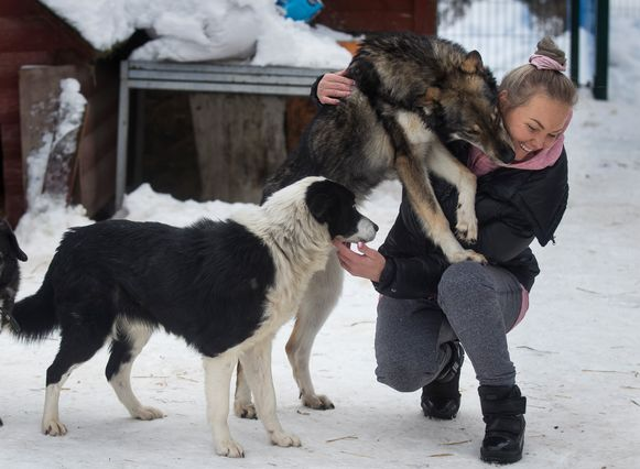 Ilona Reklaityte met enkele honden van haar eigen asiel.