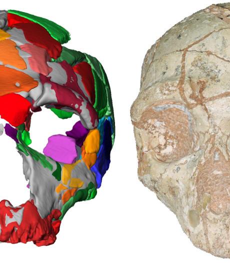 L'Homo sapiens est arrivé en Europe bien plus tôt qu'on ne le pensait