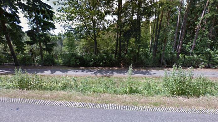 Het perceel Moergestelseweg 58 gaat schuil achter bomen en struiken.