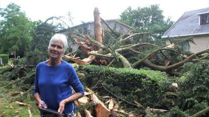 Bliksem verwoest 50 jaar oude sierden