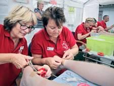 'Pleisterplek' Berghem helpt ook dit jaar deelnemers vierdaagse Nijmegen