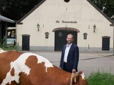 De koeien van de wethouder hebben een luizenleven