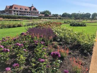 Zes Antwerpse parken krijgen internationaal duurzaamheidslabel