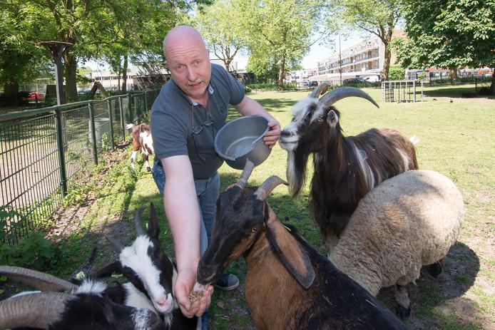 Ray Bergman van buurtboerderij De Ramshorst tussen zijn dieren.
