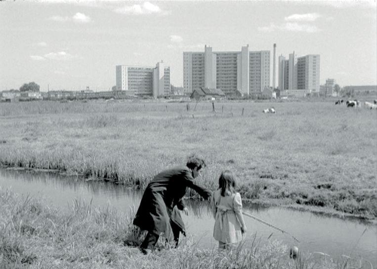 Een videostill uit 'Meeuwen sterven in de haven' (1955).