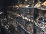 Veel verdriet bij Jan door brand in volière, 300 vogels dood