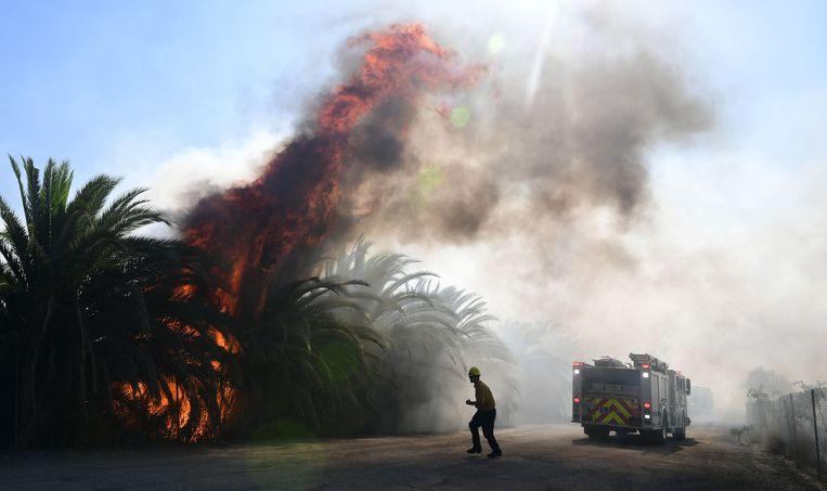 De natuurbranden teisteren Californië al bijna een week en er lijkt nog geen eind aan te komen.