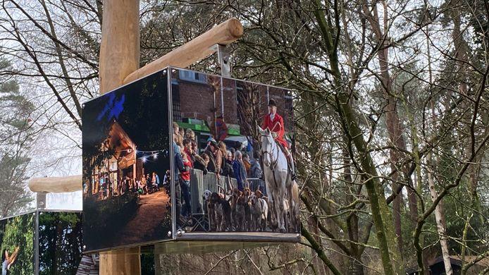 De kubussen aan de Staatsbaan in Oud-Turnhout
