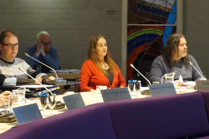 De SP toen die nog uit 3 raadsleden bestond, vlnr: Stijn van den Brekel, Deborah Eikelenboom en Arno de Laat.