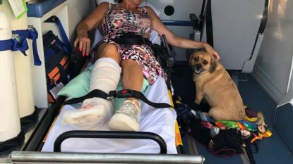 """""""Het is heel erg, níks kan ik doen in die rolstoel!"""": Goedele Liekens kijkt aan tegen langdurig herstel"""