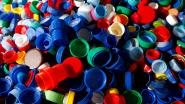Kontich zamelt plastic dopjes in voor blindegeleidehonden