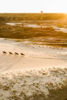 Rosmalense fotografe haalt National Geographic met Loonse en Drunense Duinen