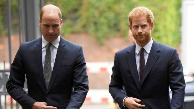 """Nazikostuum blijkt oorzaak van breuk tussen prinsen Harry en William: """"Hun relatie leed hier echt onder. Ze spraken amper met elkaar"""""""