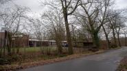 Melle kapt 12 gevaarlijk overhellende en zieke eiken in Heidestraat