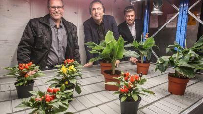 Gent krijgt boerderij van de toekomst