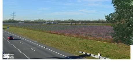 Dubbele opbrengst: gewassen onder mega-zonnepark bij A73