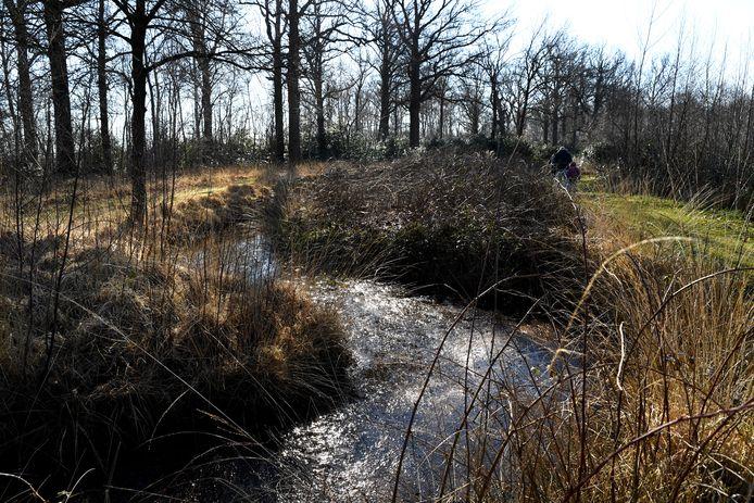 ACHTMAAL, Landgoederenserie: Wallsteijn in Achtmaal. Pix4Profs / Jan Stads