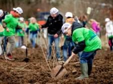 Waddinxveen wil een boom per huishouden voor betere luchtkwaliteit
