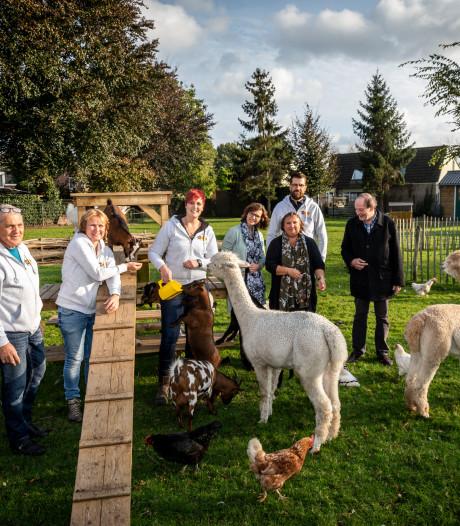 Nieuw vertier voor Achtse geitjes dankzij leefbaarheidsfonds luchthaven
