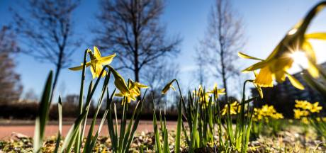 'Forse weersverbetering' op komst: vanaf dinsdag wordt het lente