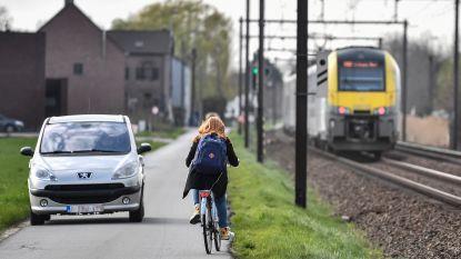 Knip in Reigersweg moet voor meer fietsveiligheid zorgen