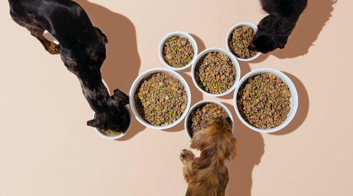 De versbereide hondenmaaltijden op maat worden gratis aan huis geleverd.
