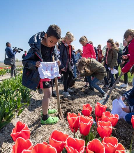 Kinderen begraven onderbroek tussen de tulpen in Creil