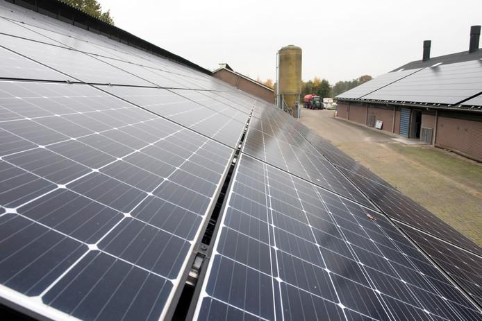 Vanwege overbelast netwerk kan Albert van Diest voorlopig niet zijn zonnepark aanleggen. Wel heeft hij inmiddels zijn schuren vol liggen met zo'n 2200 panelen.