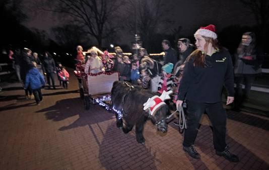 PVH Oss Ook kerstsferen op kinderboerderij Elzenhoek ; veel belangstelling voor een ritje met het verlichte pony-karretje BD OSS foto: Peter van Huijkelom