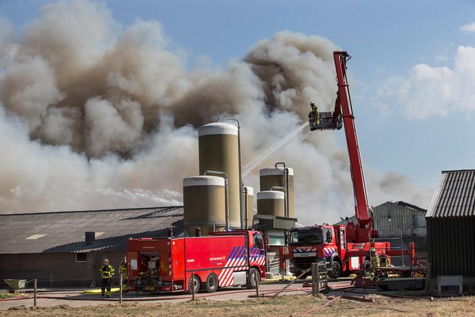 De bestrijding van de stalbrand in Didam in volle gang.