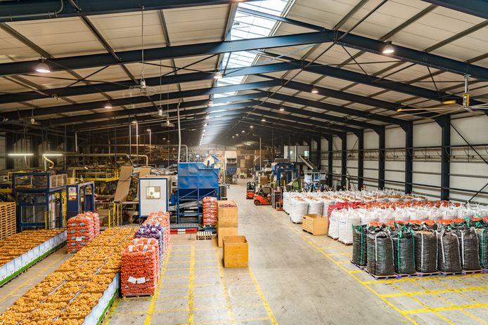 Uienhal van Waterman Onions in Emmeloord. Negentig procent van de totale productie van uien in Nederland is voor de export bestemd.