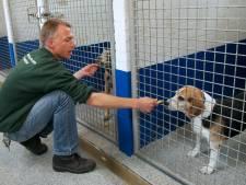 Doesburg kiest voor dierenopvang van Dierentehuis Arnhem in Velp