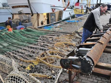 Nog niet alles is verloren voor pulsvissers