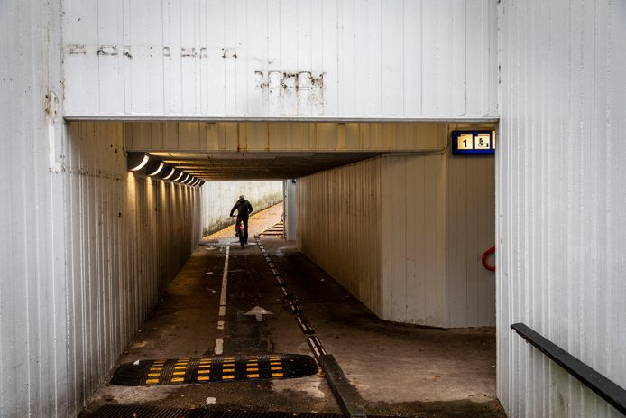 De fietstunnel onder het station in Heeze.