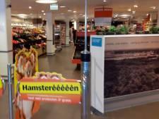 Locoburgemeester Hellendoorn: 'Jammer dat Albert Heijn open is, maar ik sluit 'm niet'