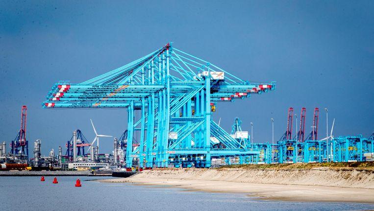 De kranen van APM in de Rotterdamse haven zijn stilgevallen nadat de computers zijn geïnfecteerd door een virus. Beeld anp