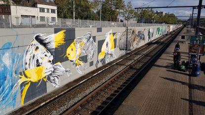 Wat als... je graffitikunstenaars een 200 meter lange stationsmuur geeft?