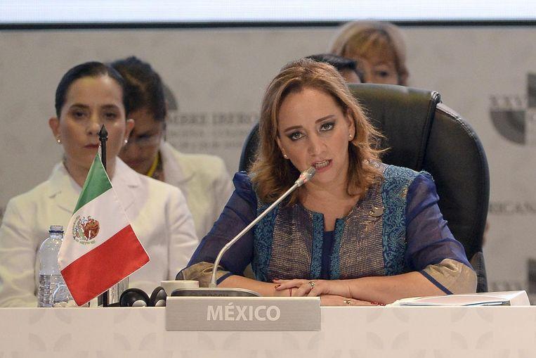 Mexicaanse minister van Buitenlandse Zaken Claudia Ruiz Massieu Beeld afp