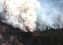 Een luchtfoto van een van de vele bosbranden in de staat Californië aan de westkust van de Verenigde Staten. (14/09/2020)
