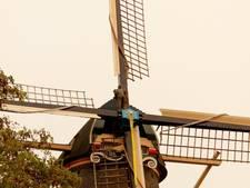 Koelbloedige 'molenman' in Veen klimt de wieken in