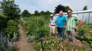 Doe inspiratie op in zeven open tuinen