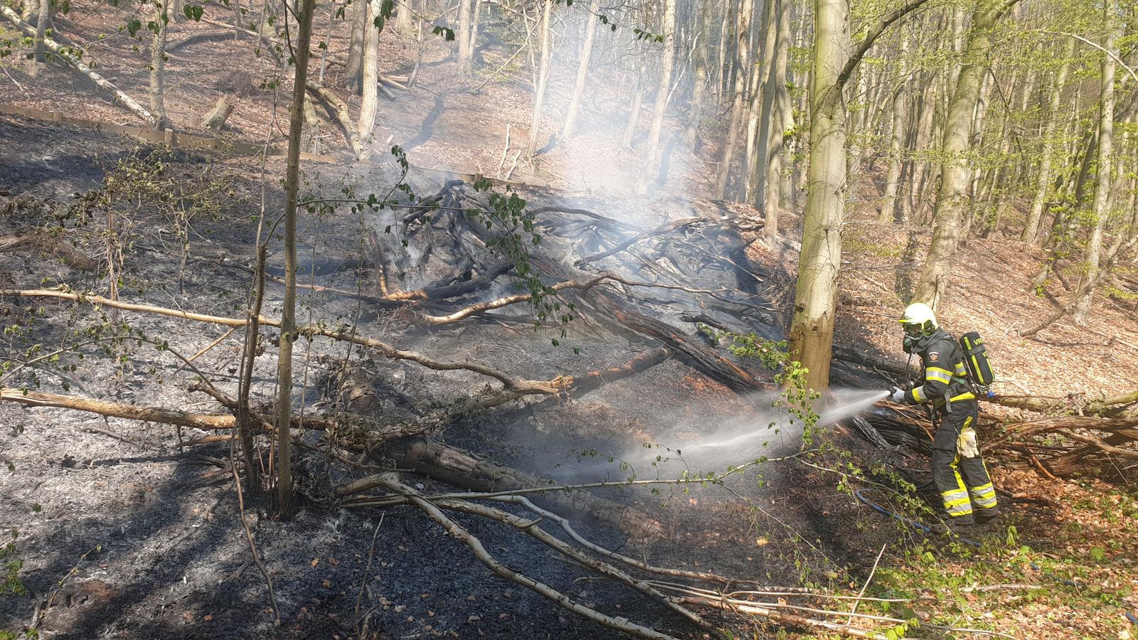 De brandweer is bezig met blussen in het bos bij Plasmolen.