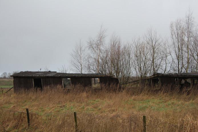 Veel zit 'op slot' in Berkellands buitengebied sinds vernietigen nieuwe bestemmingsplan buitengebied