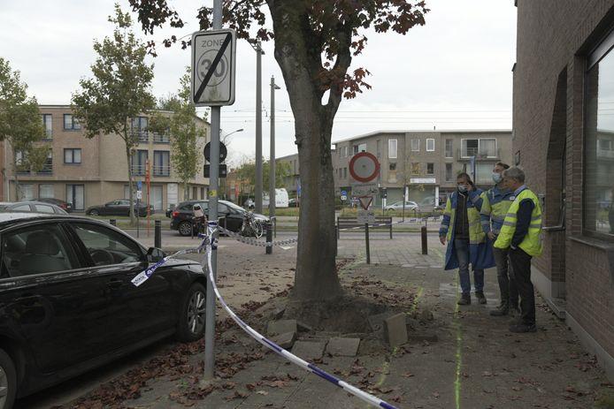 De elektriciteitsleiding in de Heldenhuldelaan veroorzaakte de twee steekvlammen.