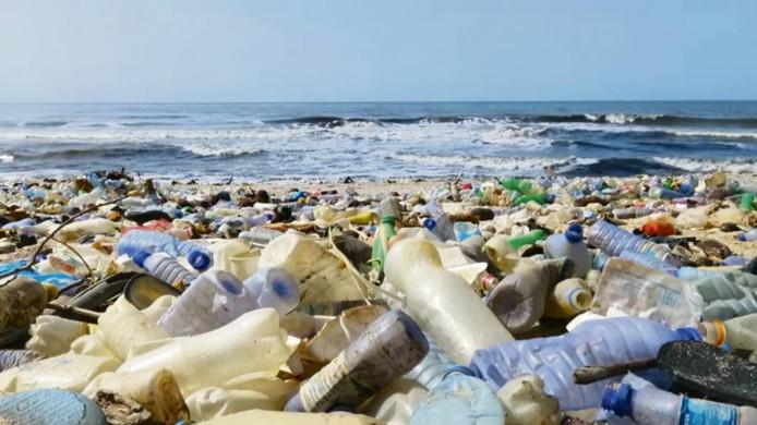 2. Afvalplastic in de wereldwateren schaadt de gezondheid van mens en dier.