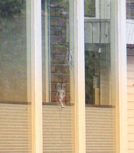 Huis in Enschede beschoten terwijl bewoner lag te slapen, kogelgaten in ruit