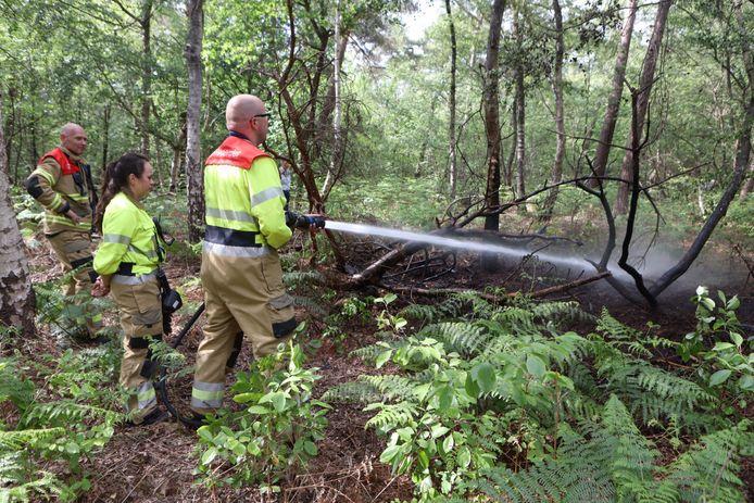 Brand in de bossen bij Rosmalen snel geblust.