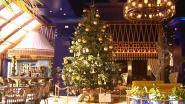 Nog op zoek naar een kerstboom? Dit exemplaar kost 12 miljoen euro